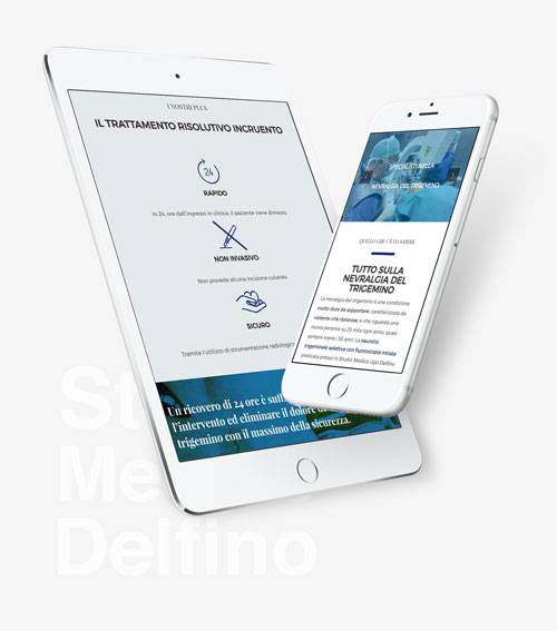 Delfino Medical Study: Wordpress website development